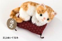 他の写真1: 「猫忍」湯あがり父上セット
