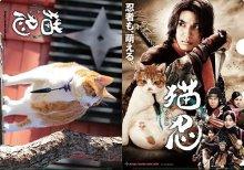 他の写真2: 送料無料!映画「猫忍」パンフレット+クリアファイルセット