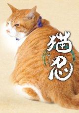 送料無料!映画「猫忍」パンフレット+クリアファイルセット