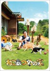 送料無料!映画「ねこあつめの家」パンフレット+クリアファイルセット