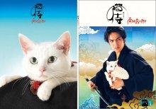 他の写真1: 送料無料!映画「猫侍 南の島へ行く」パンフレット+クリアファイルセット